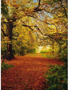 Фототапет златна есен-2