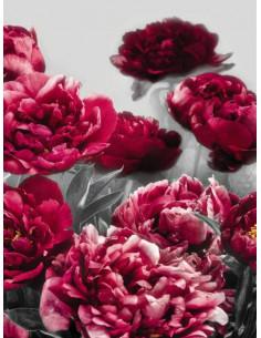 Фототапет изкушение в бордо с божури-1
